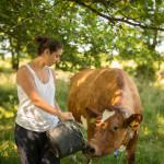 Jordbruksporträtt
