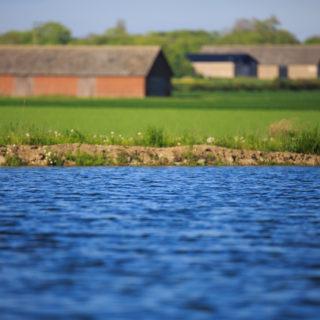 Fosfor och våtmark